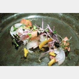 質のいい魚介類を用いた前菜(C)日刊ゲンダイ