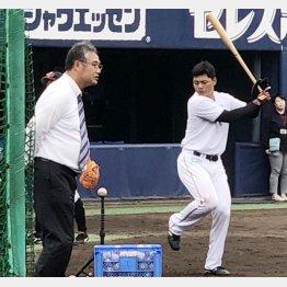 木田GM補佐が見守る中で打撃練習する清宮(C)日刊ゲンダイ