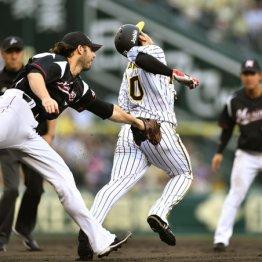 阪神・中谷は盗塁を試みるもタッチアウト