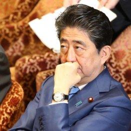 心中穏やかではない安倍首相(C)日刊ゲンダイ