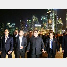 シンガポールでは夜の観光も満喫した(C)朝鮮中央通信撮影・共同