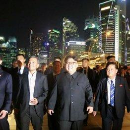 シンガポールでは夜の観光も満喫した