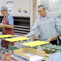 日本理化学工業・大山隆久社長<2>広告業界から父の一言で