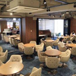 カフェ・サルバドル・ビジネスサロン<下>贅沢な空間の秘密
