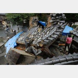 地震発生直後からデマが拡散(C)共同通信社