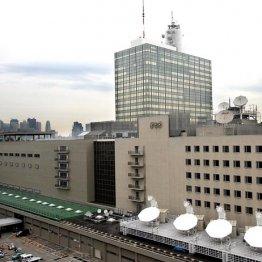 字幕もお粗末…NHK総合「サッカーW杯」の画質が荒いワケ