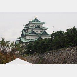 名古屋城(C)日刊ゲンダイ