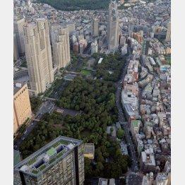 デモの出発地に使えるのは「新宿中央公園」のみに(C)共同通信社