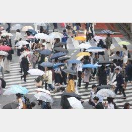 雨の日が楽しみに?(C)日刊ゲンダイ