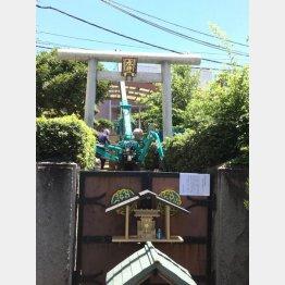 水神社で社殿の取り壊し作業が進む(C)日刊ゲンダイ