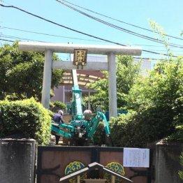 水神社で社殿の取り壊し作業が進む