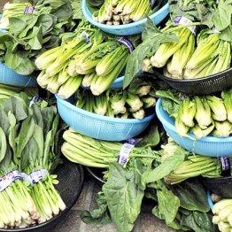 消化器系のがんを誘発 2つの毒に汚染されている日本野菜