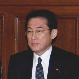 サッカー日本代表に重なる岸田政調会長の煮え切らない態度
