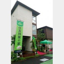 木造住宅に強み(C)日刊ゲンダイ