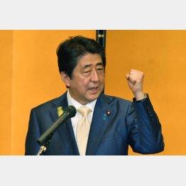"""ブルーリボンバッジは政権浮揚の""""お守り""""(C)日刊ゲンダイ"""