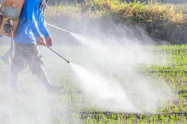 「農薬まみれ 大豆」の画像検索結果
