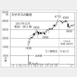 カチタス(C)日刊ゲンダイ