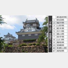 福井県・丸岡城(提供写真)