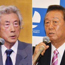 小泉純一郎元首相と小沢一郎自由党共同代表
