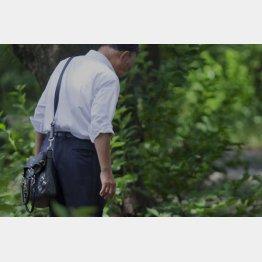 父親が奨学金を使い込み…(写真はイメージ)/(C)日刊ゲンダイ