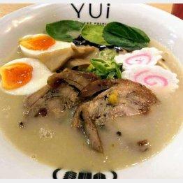 鶏肉ベースの鶏白湯スープ(C)日刊ゲンダイ