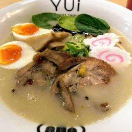 鶏肉ベースの鶏白湯スープ