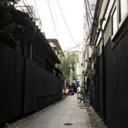 【八王子「中町・黒堀通り」編】風情ある細路地に着物美人