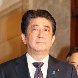 頭の中は被災者よりも総裁選 安倍首相「国家改造」の野望