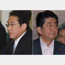 岸田政調会長と安倍首相(C)日刊ゲンダイ