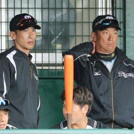 昨季までは一軍コーチを務めていた矢野二軍監督