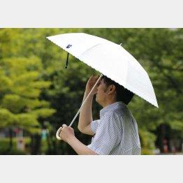 日傘男子が増えている(C)日刊ゲンダイ