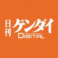 デビュー戦はギベオンと僅差の②着(右)(C)日刊ゲンダイ