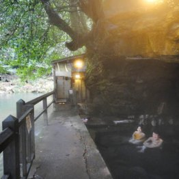湯の黒と渓谷の緑のコントラストが美しい壁湯天然洞窟温泉