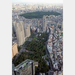東京都新宿区の新宿中央公園、奥は代々木公園(C)共同通信社