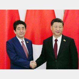 安倍首相との最後の会談は昨年11月(C)共同通信社