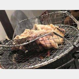 炭火でコロコロ焼き上げる(C)日刊ゲンダイ