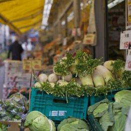 オーガニック食品をネット販売「オイシックス・ラ・大地」