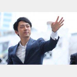 小泉進次郎(C)日刊ゲンダイ