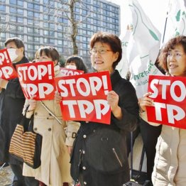 根っこは同じ 規制緩和は国家の私物化、TPPは世界の私物化