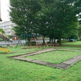 犯行現場となった公園
