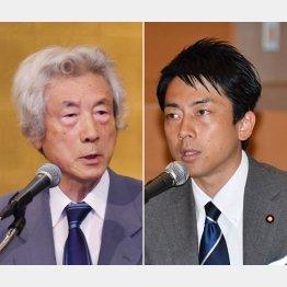 小泉純一郎元首相と進次郎議員(C)日刊ゲンダイ