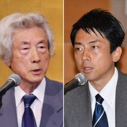 小泉純一郎元首相と進次郎議員