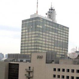 """NHKは6本の""""戦争モノ""""を放送"""