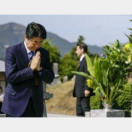 父・晋太郎元外相の墓前で手を合わせる安倍首相(C)共同通信社