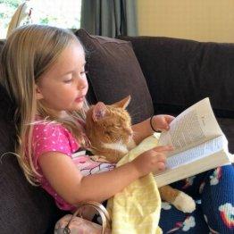 4歳の女の子が猫に読み聞かせ カワイすぎて全米ニュースに