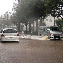 JAFが警告 ゲリラ豪雨でも「無灯火」ドライバーの思考回路