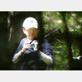 ゴルフと美食三昧の夏休み(C)日刊ゲンダイ