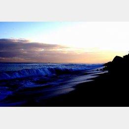 夕暮れの虎杖浜を眺めているうちに…(C)日刊ゲンダイ