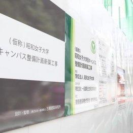 昭和女子大は学校の手厚い支援で就職率8年連続トップに