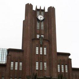 1985年に来日 野村総研での1年間の研修が契機となり再来日